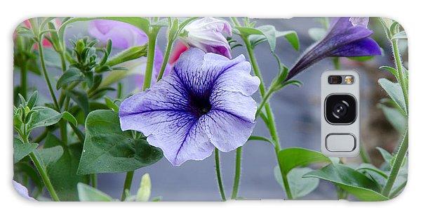 Beautiful Petunias Galaxy Case by Wilma  Birdwell