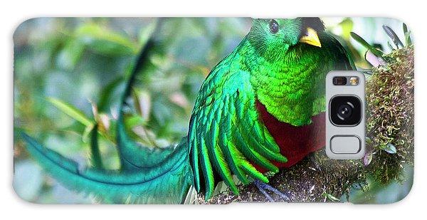Beautiful Quetzal 4 Galaxy Case by Heiko Koehrer-Wagner