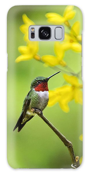 Beautiful Summer Hummer Galaxy Case