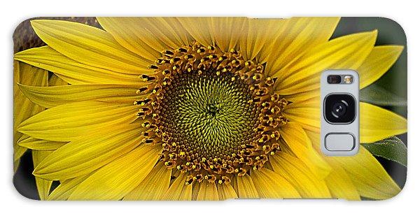 Beautiful Sunflower Galaxy Case
