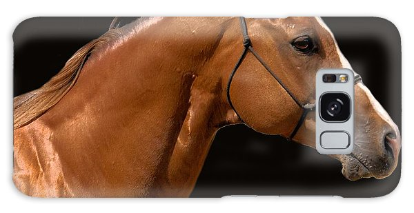 Beautiful Thoroughbred Galaxy Case by Cheryl Poland