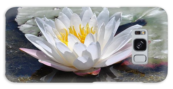 Beautiful Water Lily Galaxy Case by Michele Kaiser
