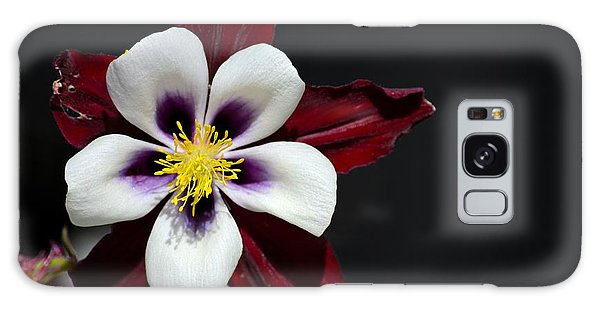 Beautiful White Petal Yellow Stamen Purple Shades Aquilegia Columbine Flower Galaxy Case