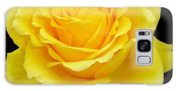 Beautiful Yellow Rose Flower On Black Background  Galaxy Case by Tracey Harrington-Simpson