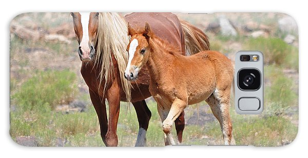Beauty And Her Foal Galaxy Case