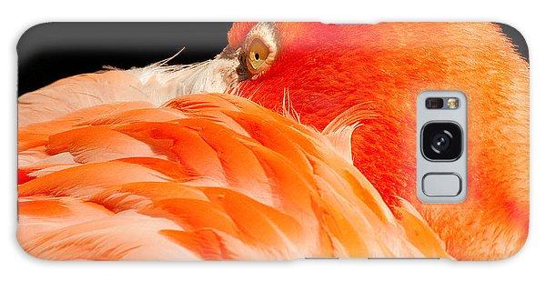 Beauty In Feathers Galaxy Case