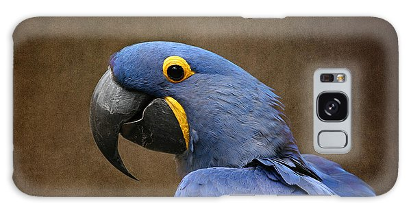 Beauty Is An Enchanted Soul - Hyacinth Macaw - Anodorhynchus Hyacinthinus Galaxy Case