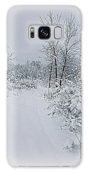 Beauty Of Winter Galaxy Case