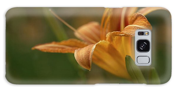 Beauty - Tiger Lily Art Print Galaxy Case by Jane Eleanor Nicholas