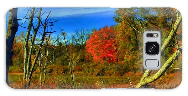 Beaver Marsh In October Galaxy Case by Dennis Lundell