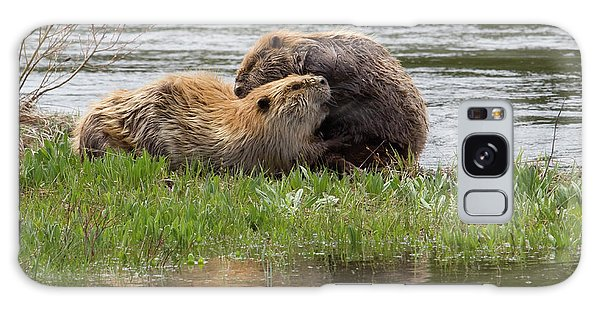 Beaver Pair Grooming One Another Galaxy Case