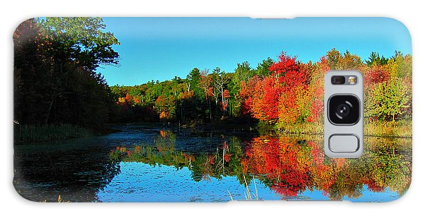 Beaver Pond Foliage Galaxy Case