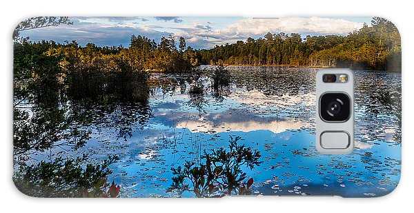 Beaver Pond - Pine Lands Nj Galaxy Case
