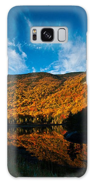 Beaver Pond White Mountain National Forest Galaxy Case