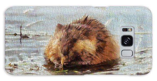 Beaver Portrait On Canvas Galaxy Case by Dan Sproul