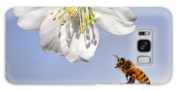 Bee And The Almond Blossom Galaxy Case by AJ  Schibig