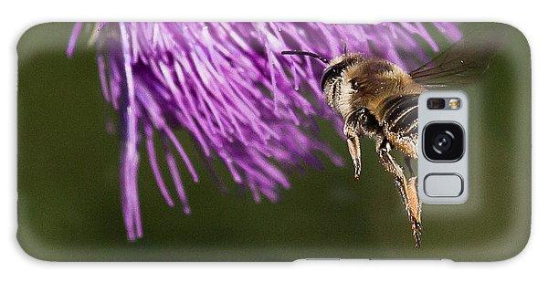 Bee Butt Galaxy Case