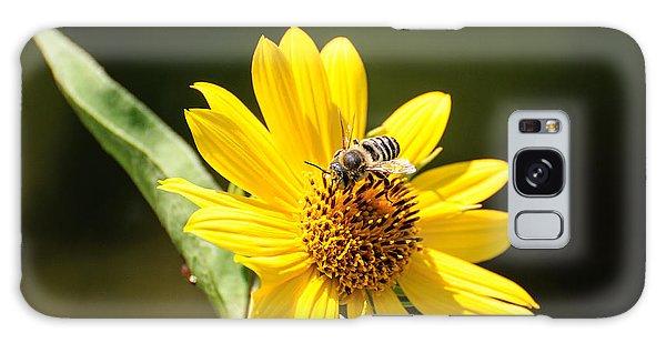 Bee Flower Galaxy Case by John Johnson