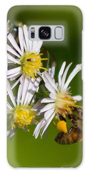 Bee Harvest Galaxy Case