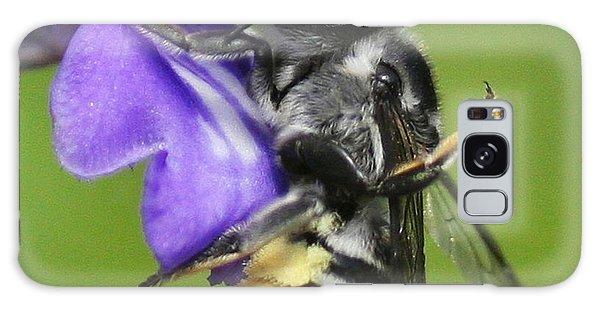 Bee-licious Flower Galaxy Case by Myrna Bradshaw