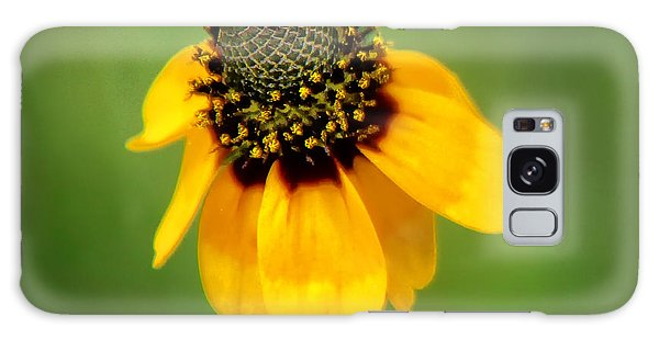 Bee My Coneflower Galaxy Case