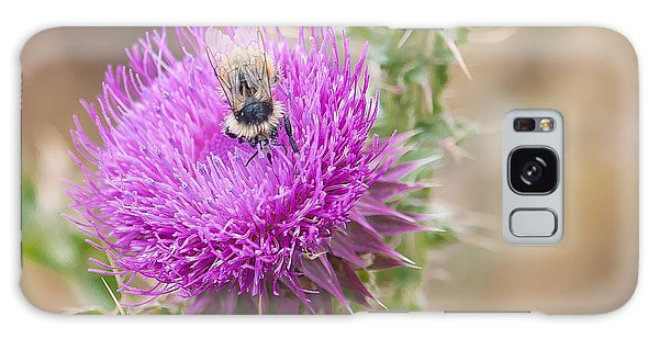 Bee On A Thistle Flower Galaxy Case by Todd Soderstrom