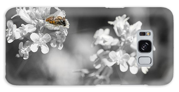 Bee On Black And White Flowers Galaxy Case by Todd Soderstrom