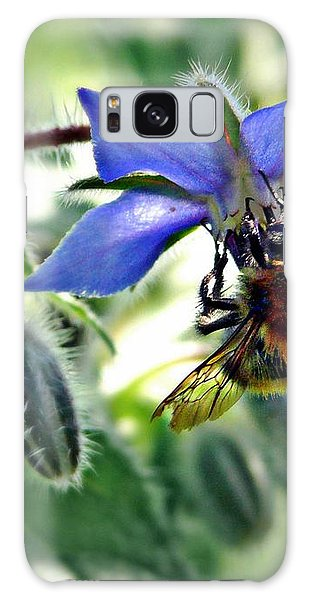 Bee On Borage Galaxy Case by Morag Bates