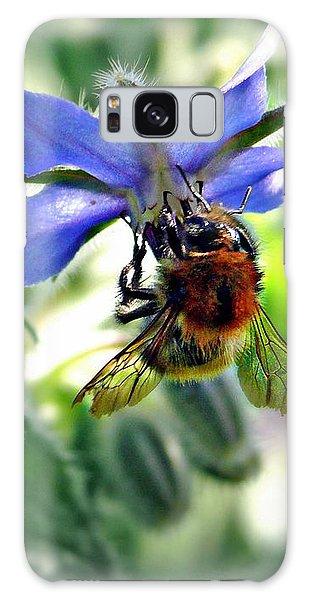 Bee On Borage Galaxy Case by Morag Bates