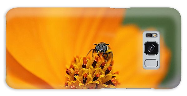 Bee On Cosmo Galaxy Case by Lisa L Silva