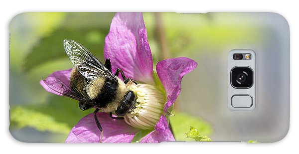 Bee On Flower Galaxy Case by Michele Wright