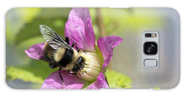 Bee On Flower Galaxy Case