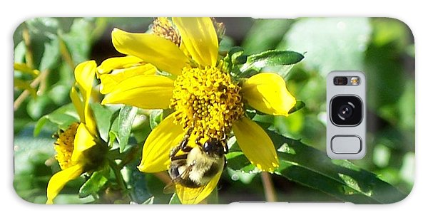 Bee On Flower Galaxy Case