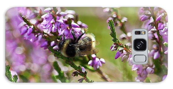 Bee On Heather Galaxy Case