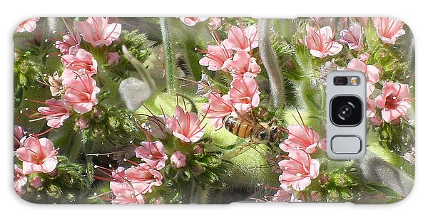 Bee On Pink Flowers Galaxy Case by Mark Barclay