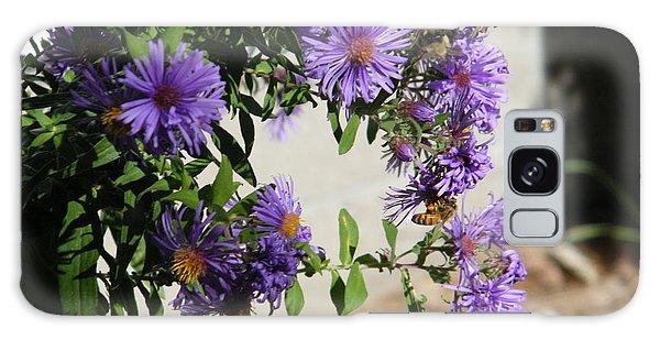 Bee On Purple Galaxy Case