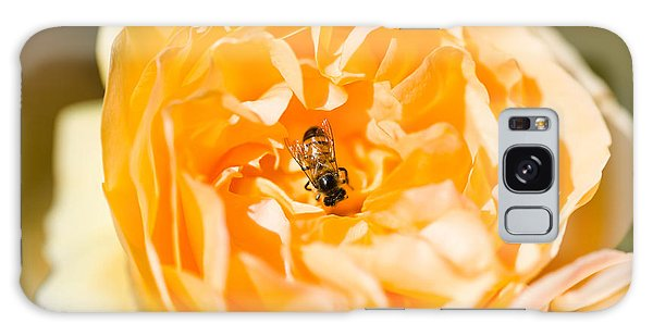 Bee Pollinating A Yellow Rose, Beverly Galaxy Case