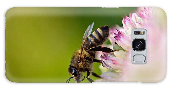 Bee Sitting On A Flower Galaxy Case