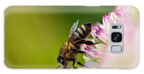 Bee Sitting On A Flower Galaxy Case