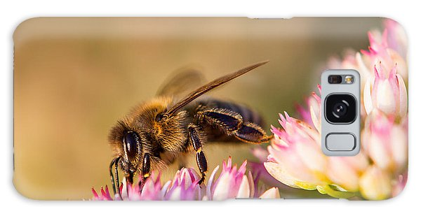 Bee Sitting On Flower Galaxy Case
