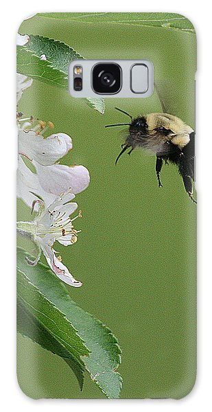 Bee With Apple Blossoms Galaxy Case