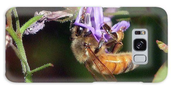 Bee With Flower Galaxy Case by Ron Roberts