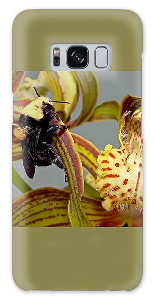 Bee With Pollen Sac On Its Back Galaxy Case