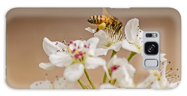 Bee Working The Bradford Pear 4 Galaxy Case