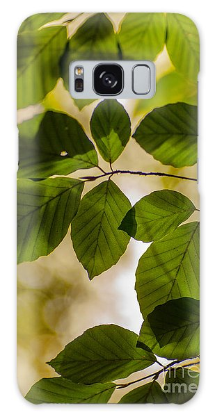 Beech Leaves And Bokeh Galaxy Case