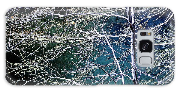 Galaxy Case - Beech Tree Highlights And Shadows Digital Art by A Gurmankin