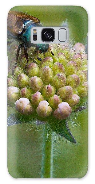 Beetle Sitting On Flower Galaxy Case