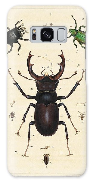 Minotaur Galaxy Case - Beetles by King's College London