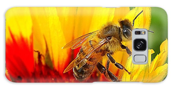 Beezy Bee Galaxy Case by Nick Kloepping