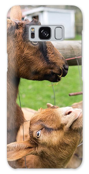 Galaxy Case featuring the photograph Begging For A Bite by Priya Ghose